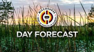 Local 10 Forecast July 19th AM