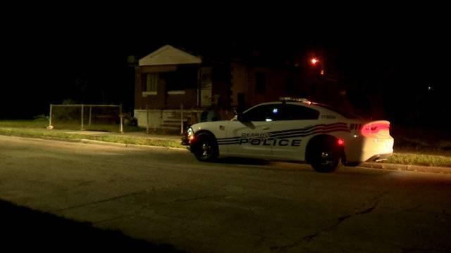 Detroit dog mauling shooting