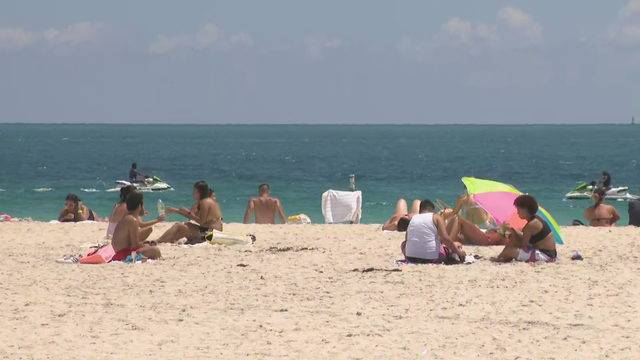 Shark Comes Close To S In South Beach Sending Swimmers Running