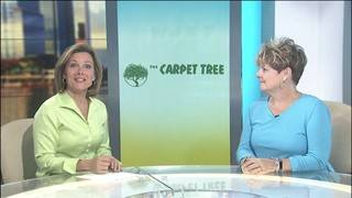 The Carpet Tree talks about their family owned business and all the&hellip&#x3b;