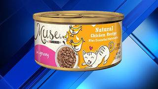 Purina recalls 1 type of cat food over potential choking hazard