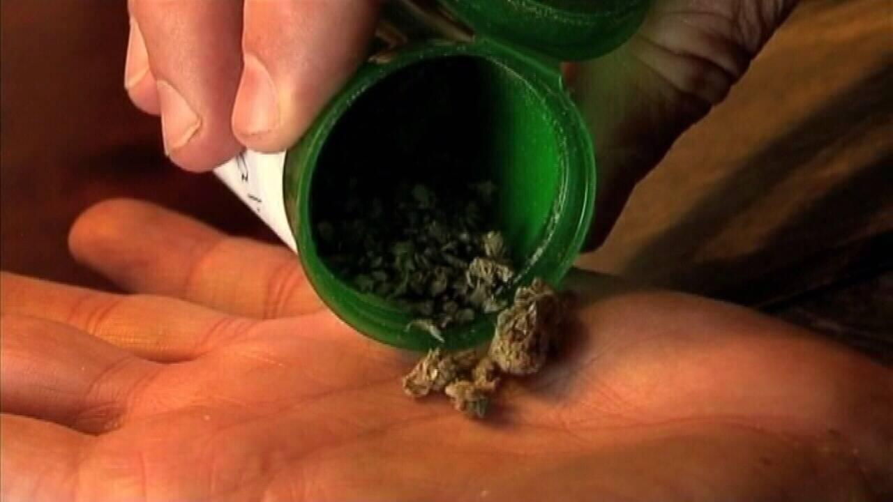 Medical-marijuana-pix.jpg_24523504