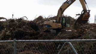 Transportation chief points to 'effective' job on debris removal