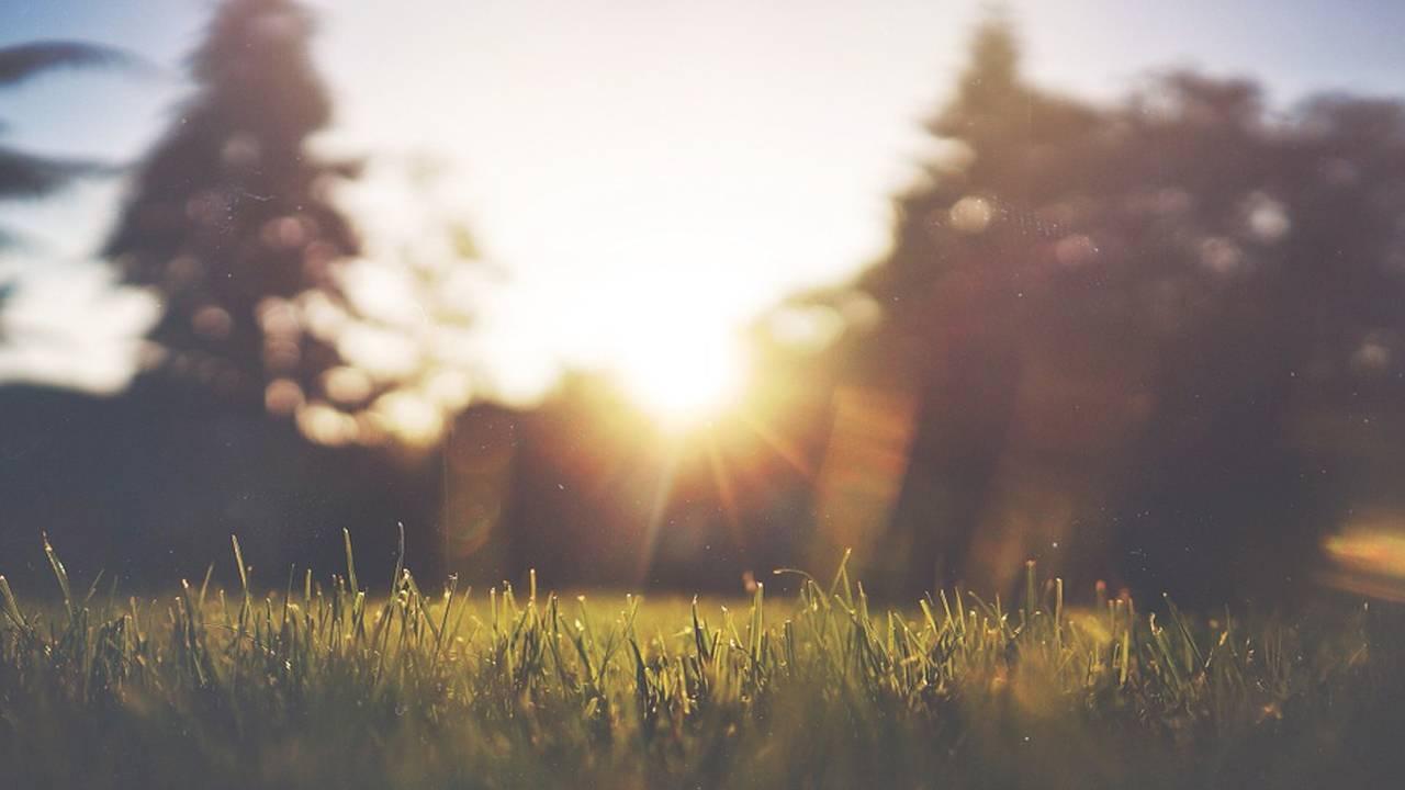 heatwave sunshine hot summer_1554718182278.jpg.jpg