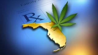 Florida marijuana grow houses a well-kept secret