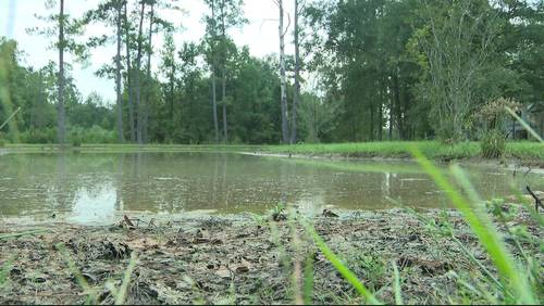 2 children drown in Montgomery County pond, authorities say