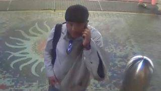 Surveillance video released of purse theft at Fort Lauderdale airport