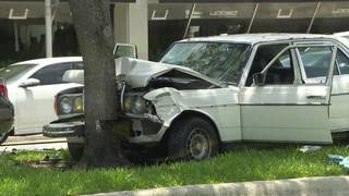 2 die when car crashes into tree in Fort Lauderdale