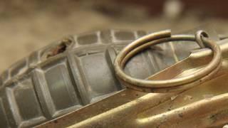 Bomb squad disarms grenade found in trash