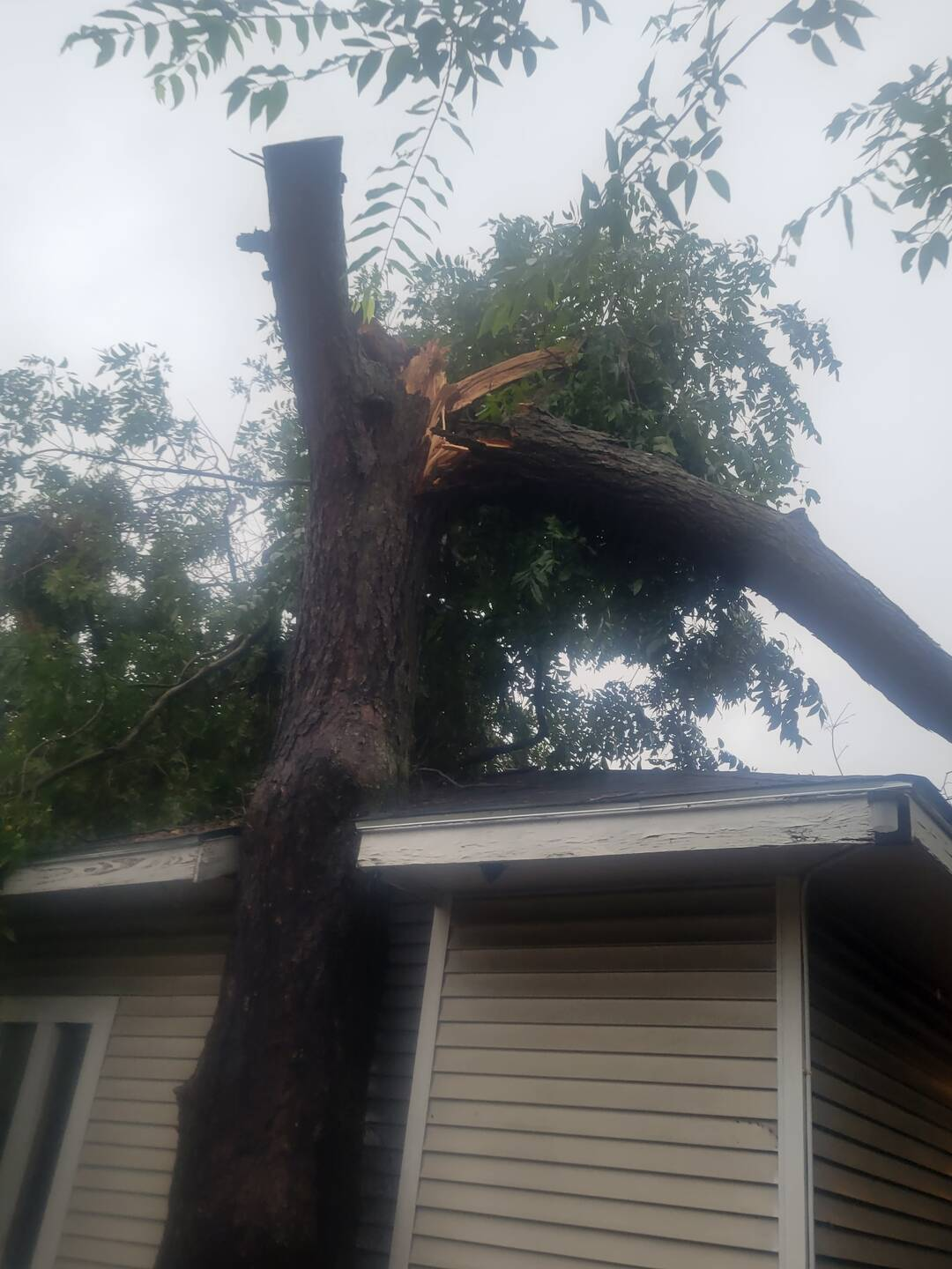 Storm damage to house