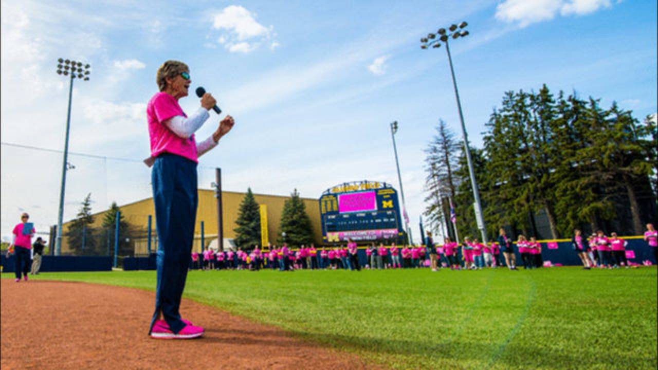 Michigan Softball Academy