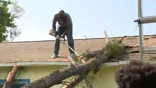 Strangers help Fort Lauderdale woman after tree collapses on roof of home