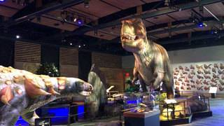 Interactive, animatronic dinosaur exhibit opening at Witte Museum