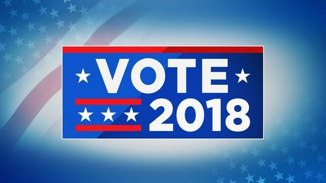Image result for voter 2018