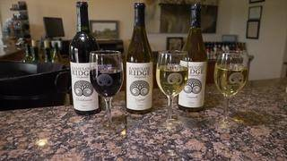 Bedford Wine Trail: Ramulose Ridge Vineyards