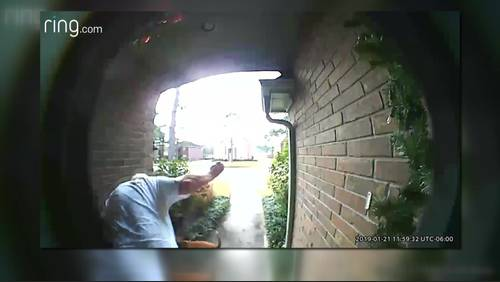 Caught on video: Dogs attack, kill family cat in Tomball