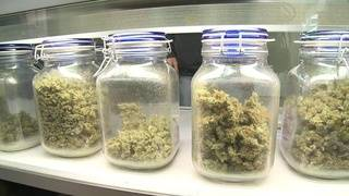 What are chances Texas will legalize medical marijuana in 2019?
