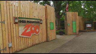 Mill Mountain Zoo continues to seek community support to complete&hellip&#x3b;