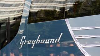 Greyhound buses put up for sale by UK owner