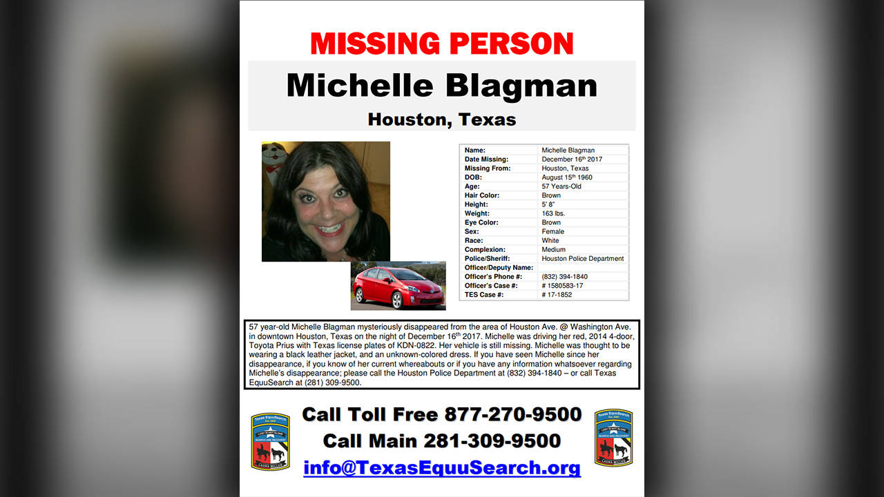 Missing Michelle Blagman poster