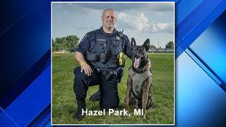 Hazel Park police K-9 needs help in contest to win new police cruiser