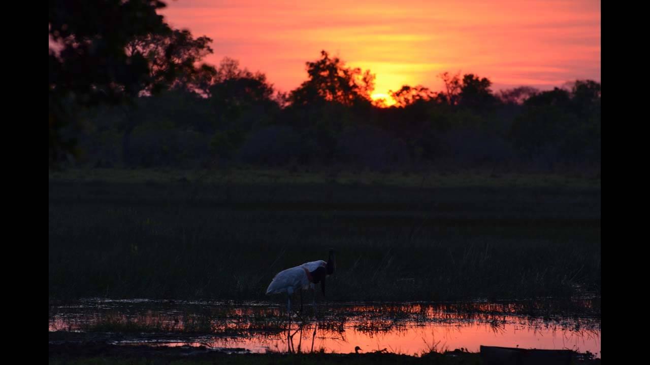 Sunrise_1570152569027.jpg