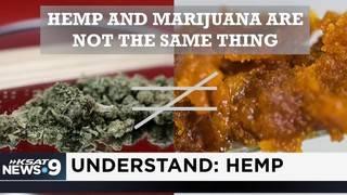 Understand: Hemp