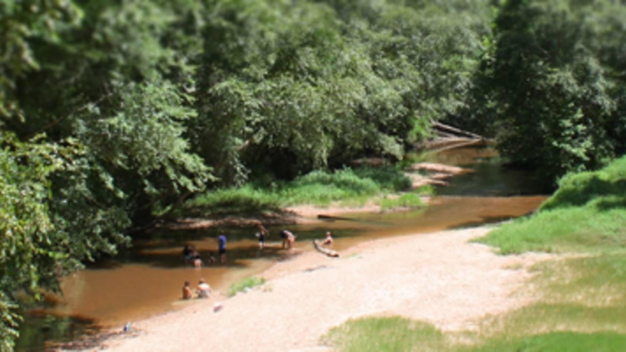 Lake Houston Wilderness Park_1558546636890.jpg.jpg