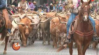 2018 Western Heritage Parade and Cattle Drive Special