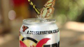 WATCH: SA Zoo, Freetail release new can design for third edition of…