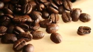 World's most popular coffee species going extinct