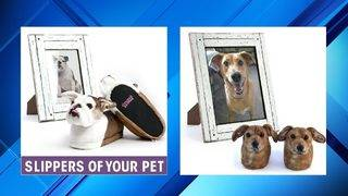 You can buy slippers that look just like your pet