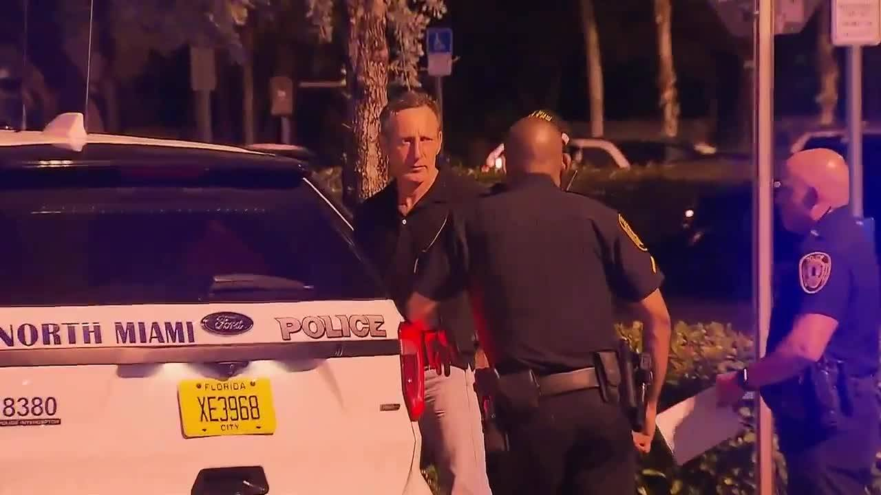 Home Depot attacker detained by police