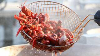 Crawfish season is coming&#x3b; 8 best places for crawfish in SA