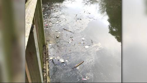 'The public needs to be aware': Fuel spill affecting Sims Bayou