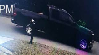 'Get in the truck:' Man approaches boys in Palm Coast, deputies say