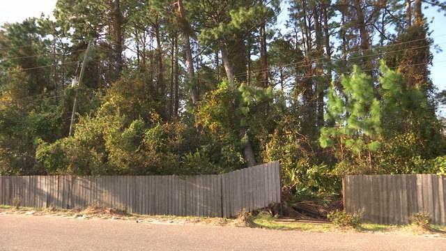 tree_1505354984188.jpg