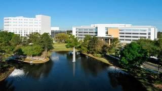 Mayo Clinic Jacksonville best hospital in Florida, surveys find