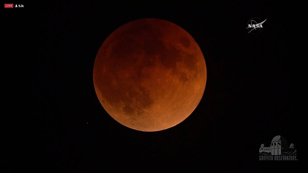 blood moon january 2019 orlando - photo #8