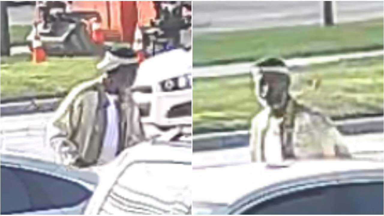 Roseville lawn equipment thieves images 2