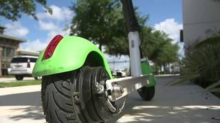 Fort Lauderdale temporarily bans scooters on barrier island