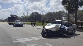 Driver dies after crashing into palm tree in Cooper City