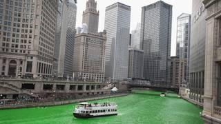 Things that turn green on St. Patrick's Day
