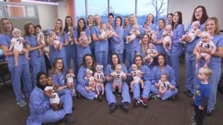 &#039&#x3b;Baby Boom Hospital&#039&#x3b;: 31 Staffers Give Birth to 32 Babies in 2018