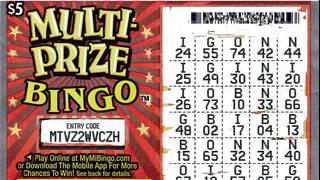 Michigan Lottery: Wayne County woman wins $300K on bingo