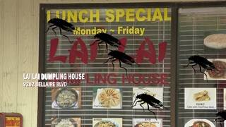 Restaurant Report Card: Roaches infiltrate local kitchens