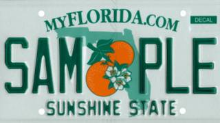 Many Florida drivers break license plate law without even knowing it