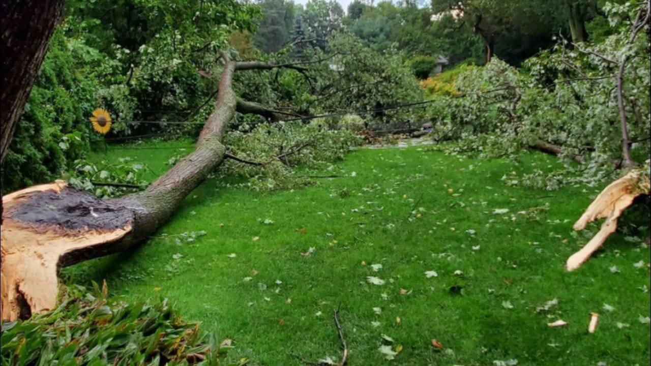 Storm damage one fINAL_1568479462192.jpg.jpg