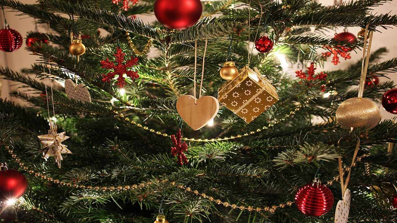 christmas tree in home_1542061858911.jpg.jpg