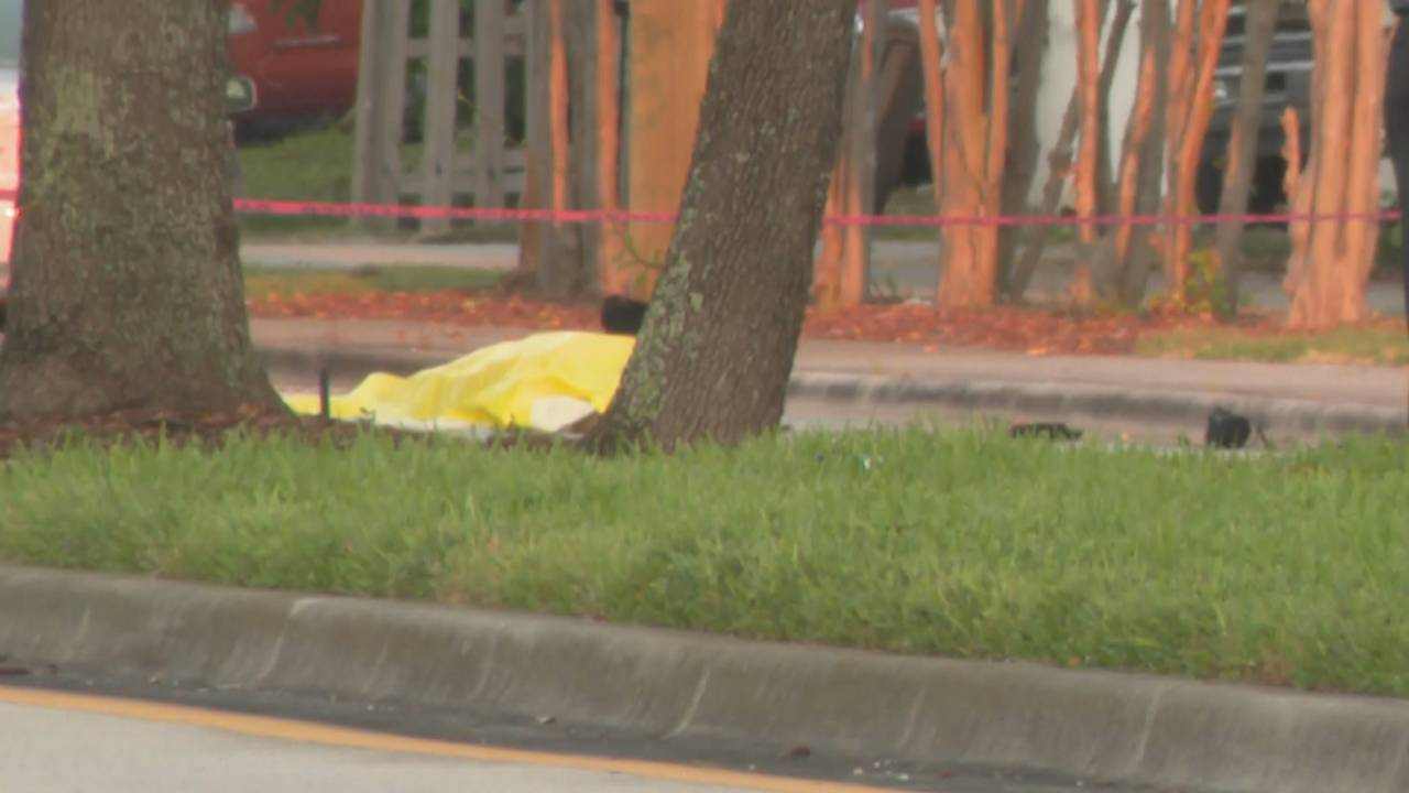 Yellow tarp covering body on Copans Road in daylight
